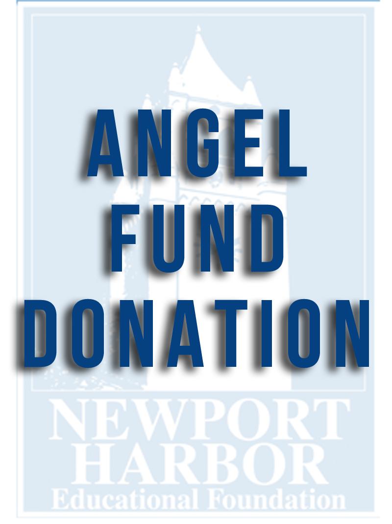 Angel Fund Donation